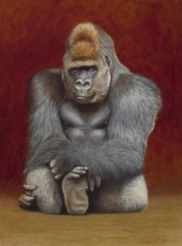 Gorilla Oil painting By Stephen Powell