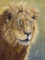 Asiatic Lion Oil painting by Stephen Powell