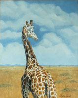 Giraffe Oil painting By Stephen Powell