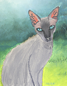 Siamese / Cornish Rex Cat by Zaneta McRae. Workshop participant of Stephen Powell Wildlife Artist at Grafton Artsfest