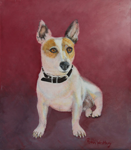 Dog by Robin Westbury. Stephen Powell Australian Wildlife Artist's students paintings