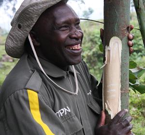 Photo by Stephen Powell Wildlife Artist Photographer The legendary Francois Bigirimana