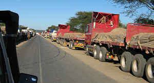 Photo by Stephen Powell Wildlife Artist Photographer. Trucks have a long wait at the Botswana ferry crossing. Some time days, as the two ferries only carry one truck at a time!