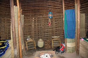 Photo by Stephen Powell Wildlife Artist Photographer Kings Huts! Rwanda