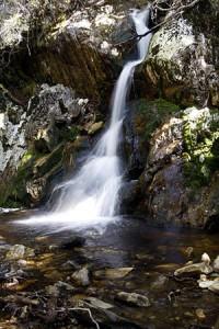 Waterfall Cradle Mountain - Lake St Clair National Park Tasmania Australia
