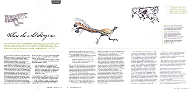 Stephen Powell paintings of Lyrebird and a Lace monitor illustrate an article by Peter Macinnis - Where the wild things are. Inside History Magazine