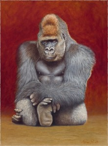 Gentle protector with the 'Pub look' - Gorilla